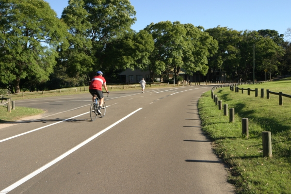 Cyclist in parklands.